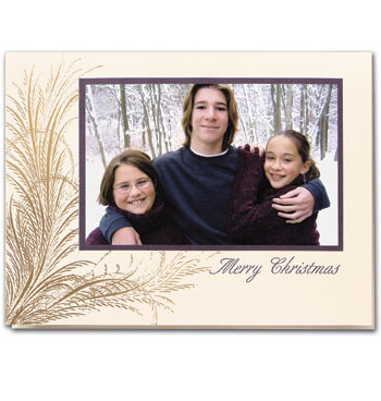 Christmas Splendor Photo Christmas Card Set of 18