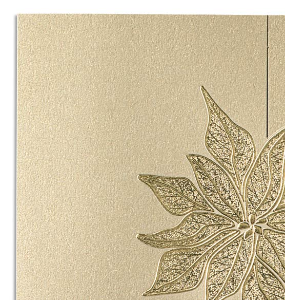 Golden Poinsettia Photo Christmas Card Set of 18
