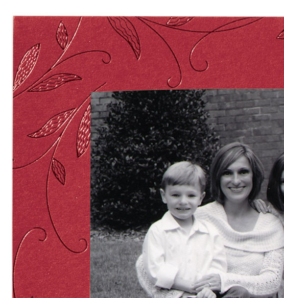 Crimson Beauty Photo Christmas Card Set of 18