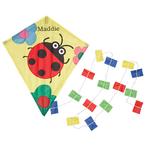 Personalized Children's Ladybug Kite - View 2