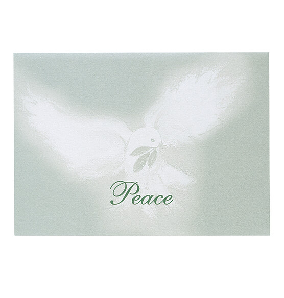 Peaceful Offering Christmas Card Set of 18 - View 2