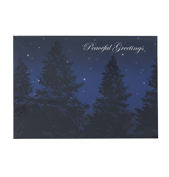 Peaceful Evening Christmas Card, Set of 18 - View 2