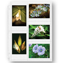 Photo Album Pages - Double Weight 3.5 x 5 Photo Pocket Pages - Set Of 10