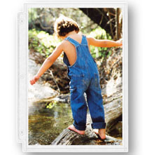 Top Rated - Double Weight 8.5 x 11 Photo Sleeves