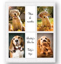 Photo Album Pages - Oversize Album Pages 4x6