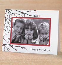 Photo Insert Cards - Branches and Berries Photo Christmas Card Set of 18