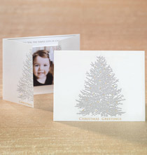 Silver Embossed Tree Photo Christmas Card Set of 18