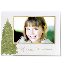Majestic Pine Photo Christmas Card Set of 18
