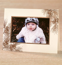 Photo Insert Cards - Gilded Pine Photo Christmas Card Set of 18