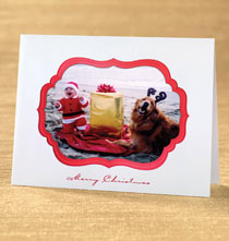 Christmas Delight Photo Christmas Card Set of 18