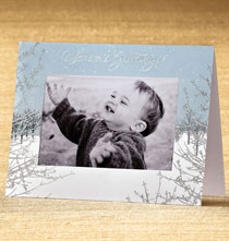 Photo Insert Cards - Silver Winterscape Photo Christmas Card Set of 18