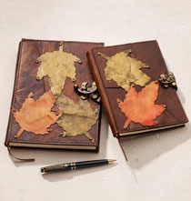 Journals - Falling Leaves Journal
