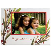Photo Insert Cards - Breezy Branches