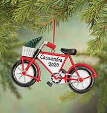 Personalized Bike with Tree Ornament