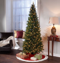 Gifts for Occasions - 7-ft. Pre-Lit Noble Spruce with Clear Lights