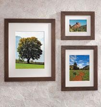 Arcadia Conservation Frame Hazelnut