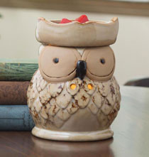 Owl Illumination™ Fragrance Warmer