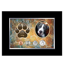 Personalized-Rescued Year To Remember Dog 4 Coin Frame