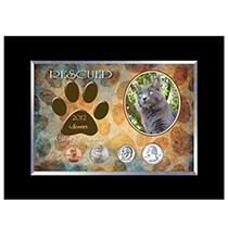 Pets - Personalized-Rescued Year To Remember Cat 4 Coin Frame