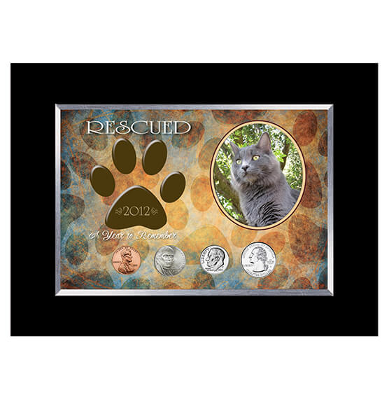 Rescued Year To Remember Cat 4 Coin Frame - View 1