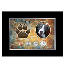 Pets - Rescued Year To Remember Dog 4 Coin Frame