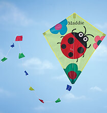 Personalized Unique Gifts - Personalized Children's Ladybug Kite