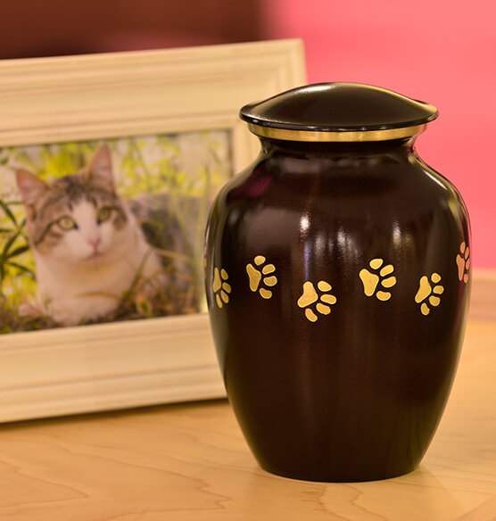 Personalized Brown Brass Paw Print Pet Urn