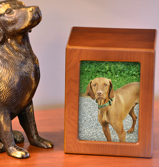 Personalized Photo Frame Pet Urn Small Pet Urns Exposures
