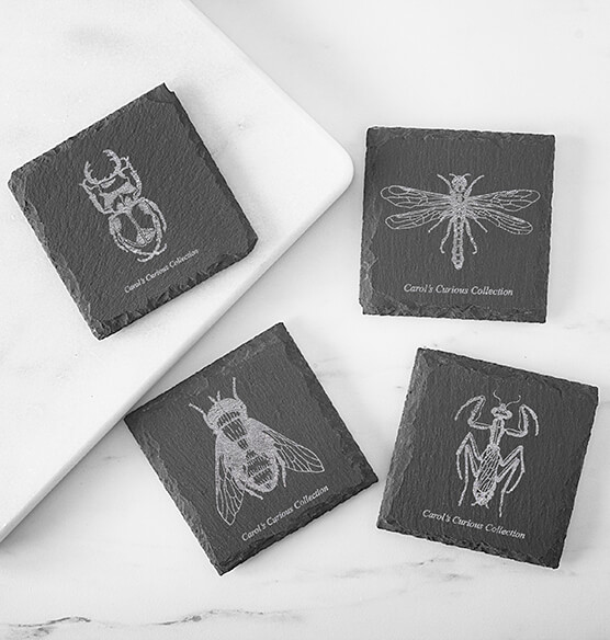 Personalized Halloween Insect Slate Coasters