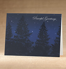 Holiday Cards - Peaceful Evening Christmas Card, Set of 18